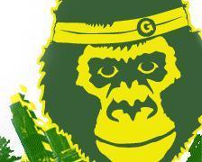 gorilla224