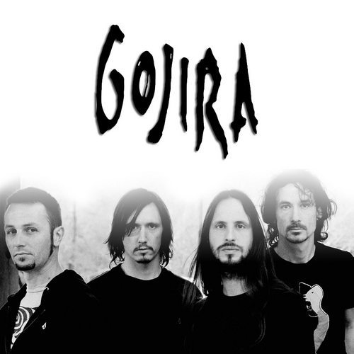 A picture of Gojira