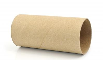 A picture of toilet roll