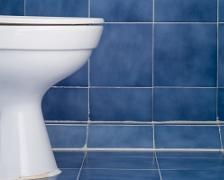 A picture of a toilet