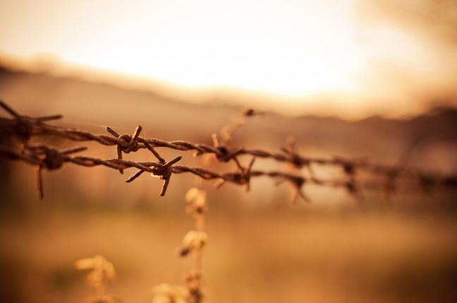 A picture of barbed wire by Victor Hanacek