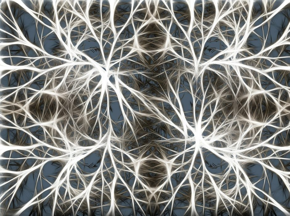 neurons by geralt