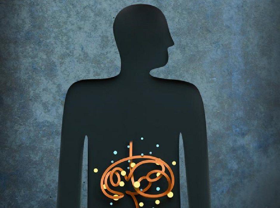 Gut microbes by E. Hsiao/Caltech