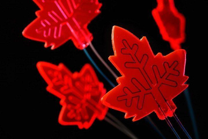artificial leaf by Bart van Overbeeke