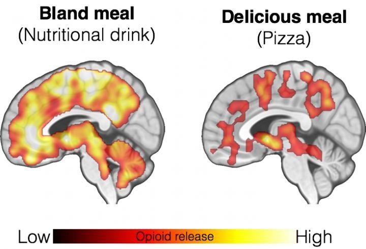 Brain images, comfort food,
